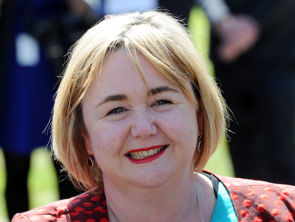 Labour spokesman on Enviroment, Megan Woods, Parliament, Wellington, New Zealand, Monday, November 24, 2014. Credit:SNPA / Ross Setford