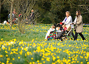 © Licensed to London News Pictures. 22/03/2012. Kew, UK. People enjoy the spring sunshine in The Royal Botanical Gardens at Kew today, 22 March 2012. Temperatures are set to reach 18 degrees celsius in some parts of the UK today. Photo credit : Stephen SImpson/LNP