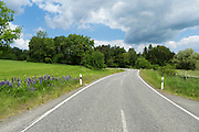 Landstraße, Kurve, Waldrand, Nordhessen, Hessen, Deutschland | country road, bend, forest, Hesse, Germany