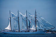 Tall Ships and Statue of Liberty National Monument, New York City, New  York, New Jersey