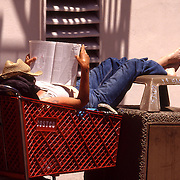 Tramp relaxing in a Costco Trolley, San Fransisco USA ,