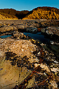 This image of the reef at Hazard Canyon in Montana de Oro State Park, near Morro Bay Calif., was taken on a tripod with one, off-camera flash with a beer bottle gel, on September 23, 2010.   (Photo by Aaron Schmidt © 2010)