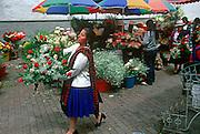 ECUADOR, HIGHLANDS, CUENCA flower market off Calderon Park