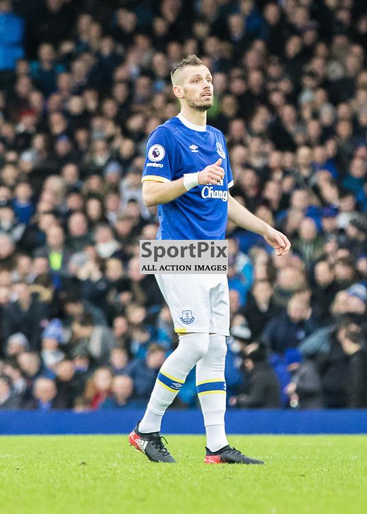 New signing Morgan Schneiderlin of Everton.Everton v Manchester City, Barclays English Premier League, 15th January 2017. (c) Paul Cram | SportPix