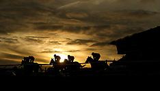 2017 November Meeting - Day One - Cheltenham Racecourse - 17 November 2017