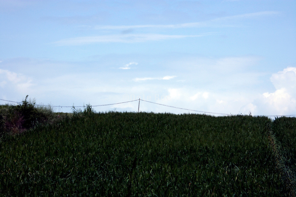 abstract landscape with telephone line