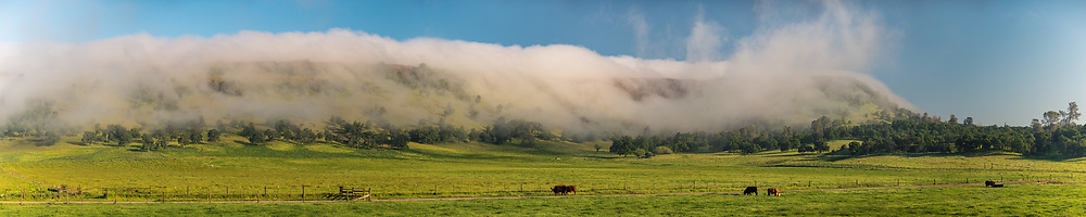 Orthographic fog pouring over hills near Jamestown, Tuolumne County in the Sierra foothills, California
