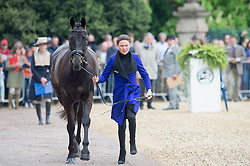 Robinson Kathryn, (CAN), Let It Bee<br /> CCI4* - Mitsubishi Motors Badminton Horse Trials 2016<br /> © Hippo Foto - Jon Stroud