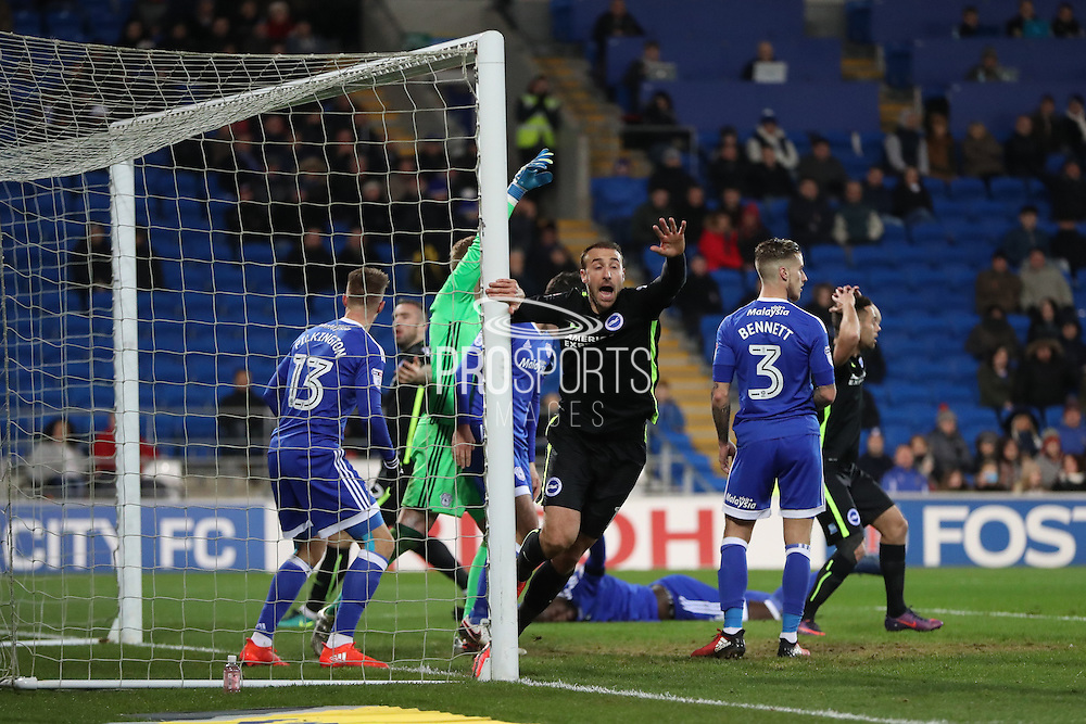 Brighton & Hove Albion centre forward Glenn Murray (17) scores a goal but it is disallowed during the EFL Sky Bet Championship match between Cardiff City and Brighton and Hove Albion at the Cardiff City Stadium, Cardiff, Wales on 3 December 2016.