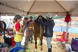 Bastijns Peter, BEL, Ezi<br /> World Equestrian Games - Tryon 2018<br /> © Hippo Foto - Dirk Caremans