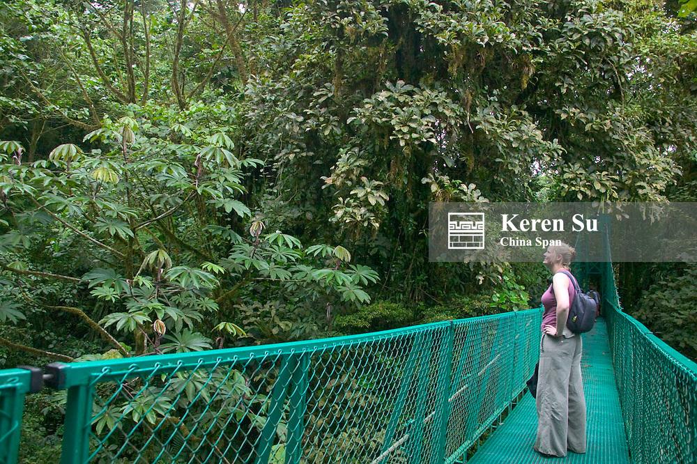 Tourists walk on sky bridge in the cloud forest, Monte Verde, Costa Rica