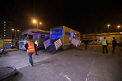Arrival of the horses at the Schiphzl Animal Center<br /> Departure of the horses to the World Cup Finals in Las Vegas from Schiphol - Amsterdam 2015.<br />  © Hippo Foto - Dirk Caremans
