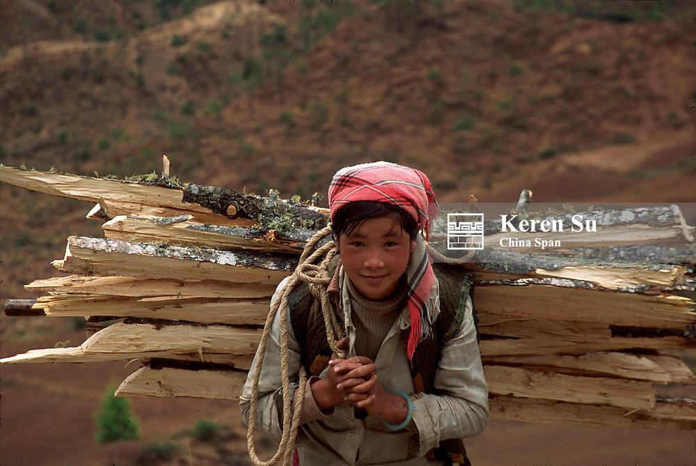 Pumi people carrying firewood, Lijiang, Yunnan Province, China