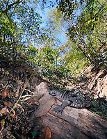 Guatemala - Montagua Valley