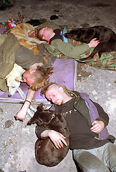 Three young men and their dogs sleeping rough in derelict building,