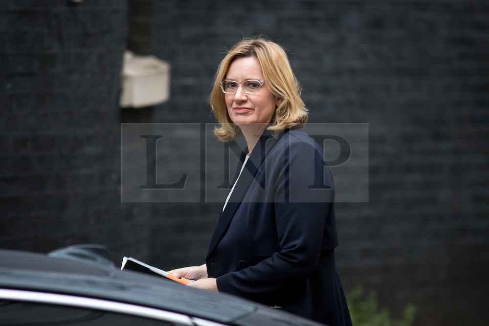 © Licensed to London News Pictures. 31/01/2017. London, UK. Home Secretary Amber Rudd arriving at Downing Street for a cabinet meeting this morning. Photo credit : Tom Nicholson/LNP