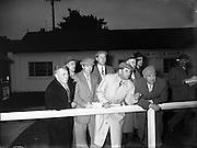 Goffs November Sales, Ballsbridge.18/11/1958