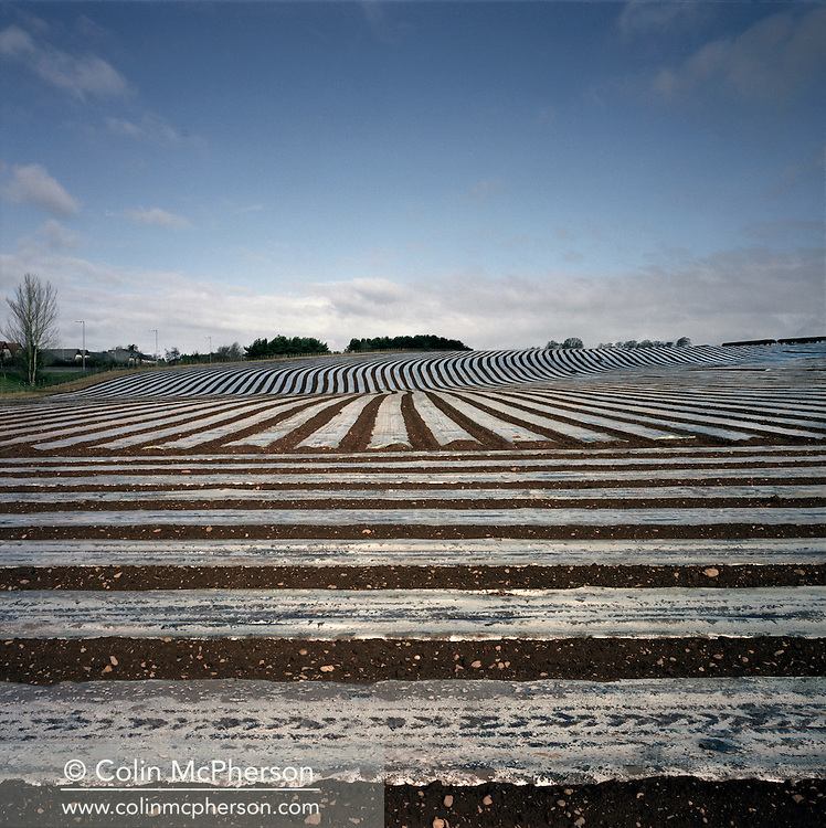 'Farmland, Hustle Bank, 2013' from 'A Fine Line - Exploring Scotland's Border with England' by Colin McPherson.<br /> <br /> Farmland by the banks of the river Sark, which marks the boundary between Scotland and England.<br /> <br /> The project was a one-year exploration of the border between the two historic nations, as seen from the Scottish side of the frontier.<br /> <br /> Colin McPherson is a photographer and visual artist based in north west England. In 2012 he was one of the founding members of Document Scotland, a collective of four Scottish documentary photographers brought together by a common vision to witness and photograph the important and diverse stories within Scotland at one of the most important times in our nation's history.<br /> <br /> 'A Fine Line' will be shown for the first time in public at Impressions Gallery, Bradford, from July 1 until September 27, 2014 to coincide with the Scottish Independence referendum.