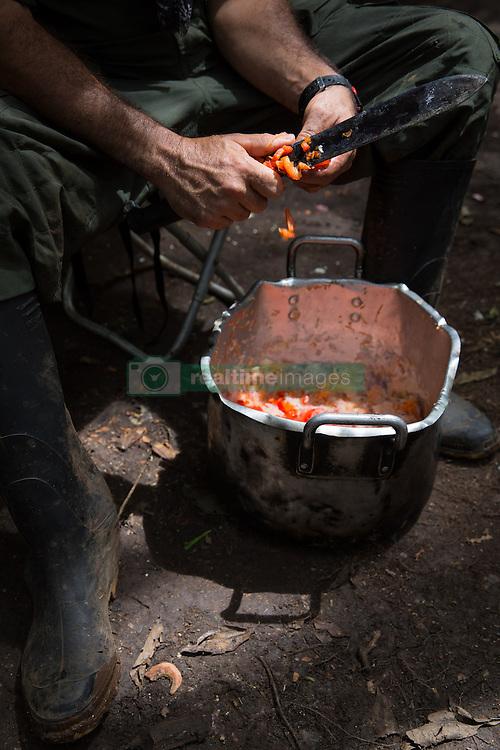 El Diamante, Meta, Colombia - 18.09.2016        <br /> <br /> Kitchen area of the guerilla camp during the 10th conference of the marxist FARC-EP in El Diamante, a Guerilla controlled area in the Colombian district Meta. Few days ahead of the peace contract passing after 52 years of war with the Colombian Governement wants the FARC decide on the 7-days long conferce their transformation into a unarmed political organization. <br /> <br /> Kuechenbereich im Guerilla-Camp zur zehnten Konferenz der marxistischen FARC-EP in El Diamante, einem von der Guerilla kontrollierten Gebiet in der kolumbianischen Region Meta. Wenige Tage vor der geplanten Verabschiedung eines Friedensvertrags nach 52 Jahren Krieg mit der kolumbianischen Regierung will die FARC auf ihrer sieben taegigen Konferenz die Umwandlung in eine unbewaffneten politischen Organisation beschlieflen. <br />  <br /> Photo: Bjoern Kietzmann