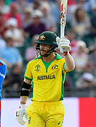 50 - David Warner of Australia celebrates scoring a half century during the ICC Cricket World Cup 2019 match between Afghanistan and Australia at the Bristol County Ground, Bristol, United Kingdom on 1 June 2019.
