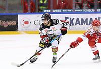 2020-03-07   Ljungby, Sverige: Bodens HF (4) Max Pålholm under matchen i Hockeyettan mellan IF Troja/Ljungby och Bodens HF i Ljungby Arena ( Foto av: Fredrik Sten   Swe Press Photo )<br /> <br /> Nyckelord: Ljungby, Ishockey, Hockeyettan, Ljungby Arena, IF Troja/Ljungby, Bodens HF, fstb200307, playoff, kval