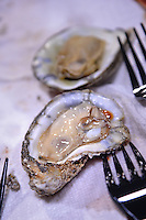 Oyster, steamed and ready for consumption.