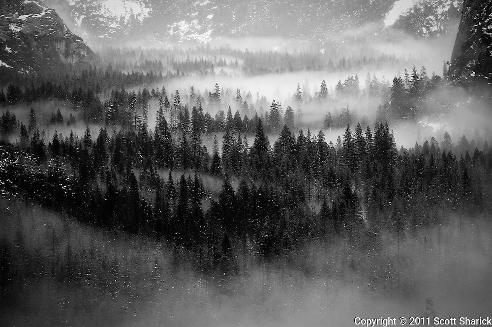 Black and white images of Yosemite National Park.