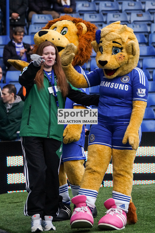 Chelsea mascots,  Chelsea v Swansea, Barclays Premier League, 26 December 2013