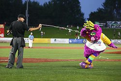 11 July 2012:  Reggy the Purple Party Dude hams it up with the home plate umpire Dave Logan who ends up covering the Dude with silly string during the Frontier League All Star Baseball game at Corn Crib Stadium on the campus of Heartland Community College in Normal Illinois