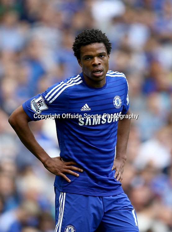 13 September 2014 - Barclays Premier League - Chelsea v Swansea City - Loic Remy of Chelsea - Photo: Marc Atkins / Offside.