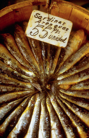 April 1988, Madrid, Spain --- A bucket of sardines for sale, Madrid, Spain. --- Image by © Owen Franken/Corbis