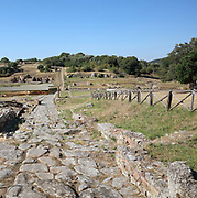 Strada Latriscata, the Cardo Maximus or main street, Roman, 1st century AD, to the East of the forum, running North-South, in Roselle, an ancient Etrurian city near Grosseto, in Tuscany, Italy. Grooves made by cart wheels are visible in the road. The city grew in the 7th and 6th centuries BC in the late Archaic period, and became Roman in the 3rd century BC. It was abandoned in the Middle Ages and excavated in the 19th and 20th centuries. Picture by Manuel Cohen