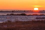 Sunset near Churchill Manitoba.