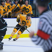 2nd year defence man Landon Peel (28) of the Regina Cougars during the Shine On game on October 28 at The Co-Operators Arena. Credit: /Arthur Images