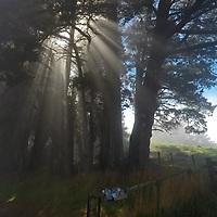 DCIM\101GOPRO\GOPR1757.JPG Sea fog nothcoast