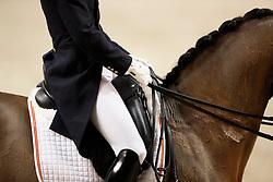 Carrascosa Borja, (ESP), Foco Loco W<br /> FEI World Cup Dressage Grand Prix <br /> FEI World Cup Neumünster - VR Classics 2017<br /> © Hippo Foto - Stefan Lafrentz
