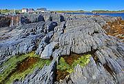 Rocky coastline of Lunenburg Bay (Atlantic Ocean)<br /> Blue Rocks<br /> Nova Scotia<br /> Canada