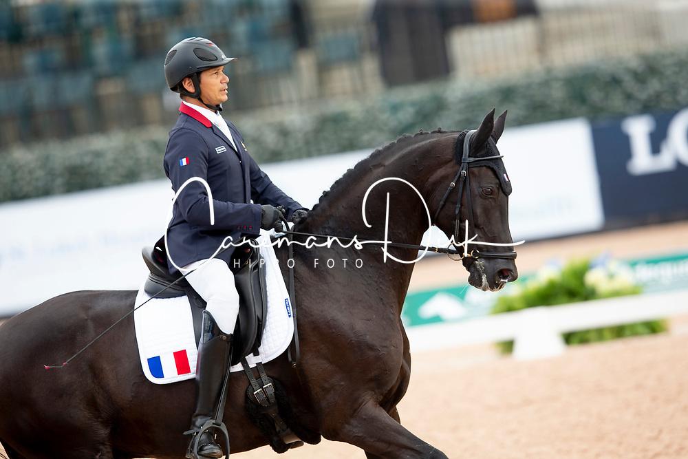 Letartre Jose, FRA, Swing Royal<br /> World Equestrian Games - Tryon 2018<br /> © Hippo Foto - Sharon Vandeput<br /> 18/09/2018
