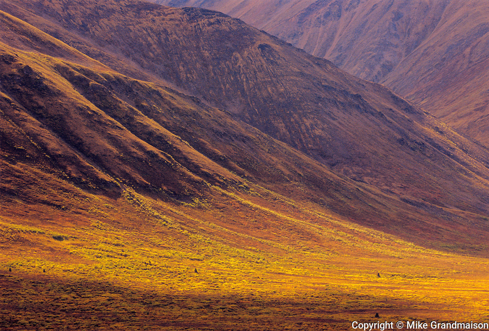 Ogilvie Mountains along the Dempster Highway<br /> <br />  Tombstone Territorial Park<br /> Yukon<br /> Canada