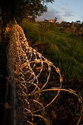 Itupeva_SP, Brasil...Detalhe da cerca de arame farpado em Itupeva, Sao Paulo...Barbed wire detail in Itupeva, Sao Paulo...Foto: MARCUS DESIMONI / NITRO