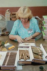 Packing cigars into boxes at Partagas cigar factory; Havana; Cuba,