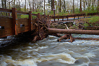 A Tree Caught By the Single Lane Rock Brook Bridge Last Night During the Flooding. Spring Nature in New Jersey. Image taken with a Fuji X-T1 camera and 23 mm f/1.4 lens (ISO 200, 23 mm, f/16, 1/9 sec).