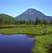 Volcanic Mt. Rausu, the highest peak on the Shiretoko Peninsula, rises above Ni-Numa (Second Pond) on the trail to Lake Rausu, Shiretoko National Park, an UNESCO World Heritage Site.