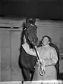 1952 International League for Protection of Horses at RDS Sales