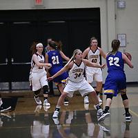 Women's Basketball: Concordia College, Moorhead Cobbers vs. The College of St. Scholastica Saints