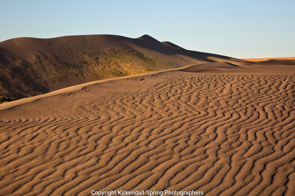 ID00666-00...IDAHO - Early morning on the sand dune at Bruneau Dunes State Park.