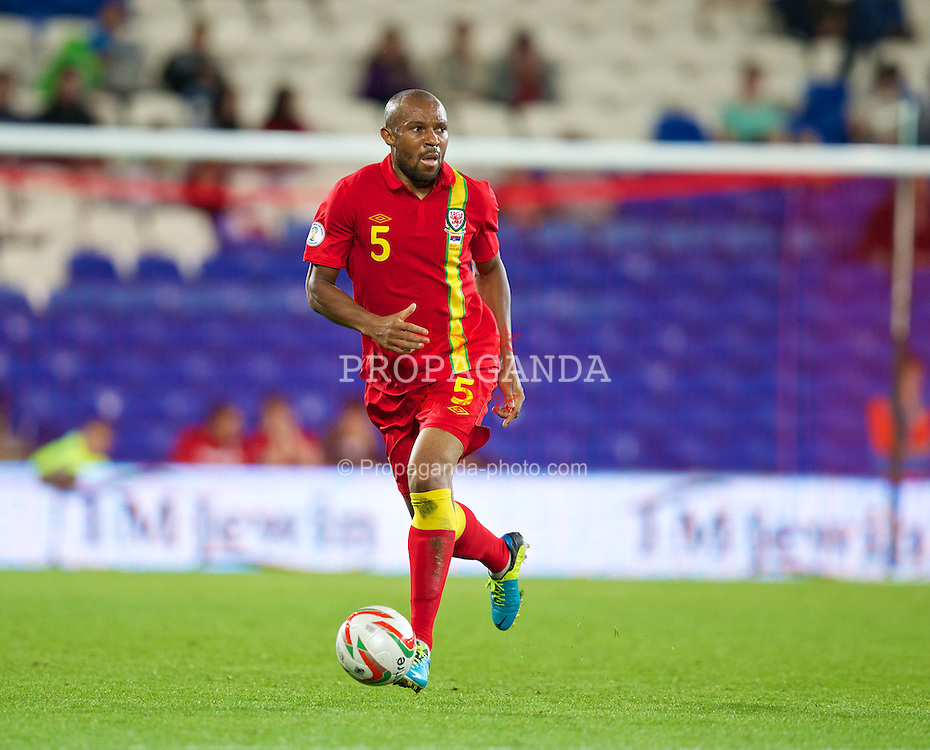CARDIFF, WALES - Tuesday, September 10, 2013: Wales' Daniel Gabbidon in action against Serbia during the 2014 FIFA World Cup Brazil Qualifying Group A match at the Cardiff CIty Stadium. (Pic by David Rawcliffe/Propaganda)