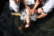 A pool baptism on Easter Sunday at a church in Miami, FL.
