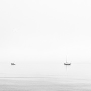 Boats sit calmly just off shore on a foggy day. Vancouver, BC. Photo: © Rod Mountain