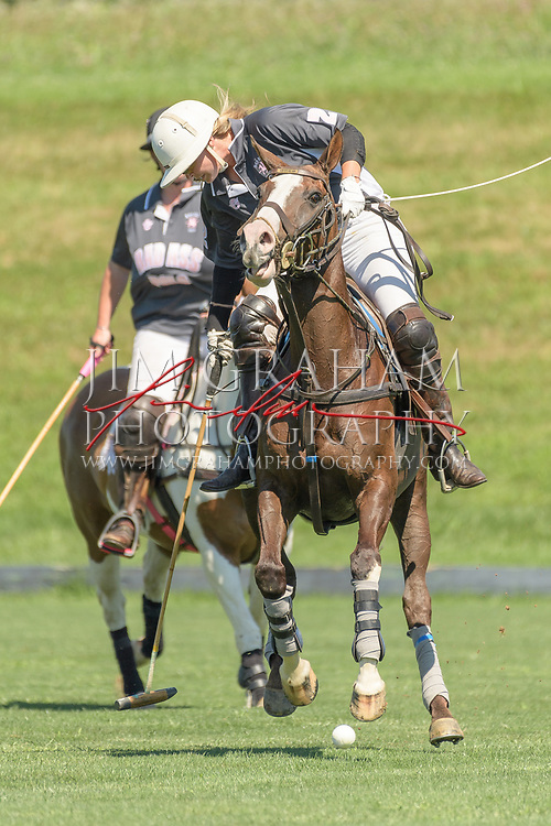 Brandywine Polo in Toughkennemon, Pa., on 30 July 2017. Photograph by Jim Graham